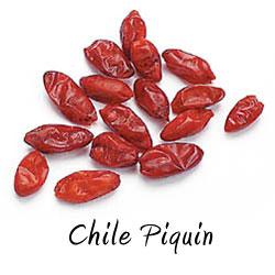 Chile piquin